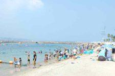 日間賀島でのんびり ちょっと穴場な名古屋の海辺観光デート