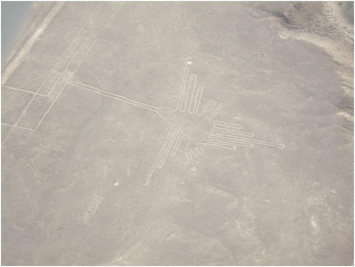 ナスカの地上絵の謎解きツアー!いったい誰が作ったの!?
