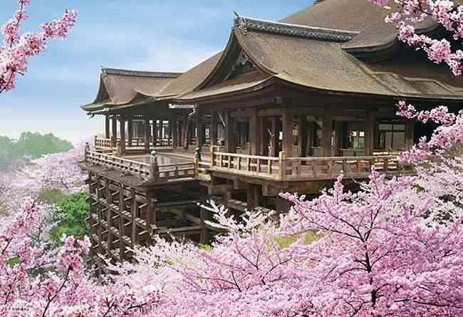 清水寺に足がすくんで急接近☆京都の鉄板デートプラン☆