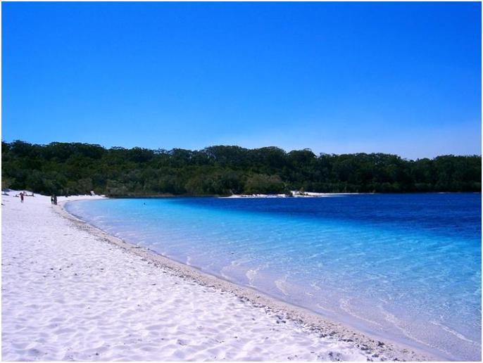 フレーザー島の魅力を徹底紹介!世界最大の砂島!