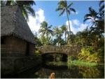 大満足のポリネシア文化センターでハワイの文化を満喫!