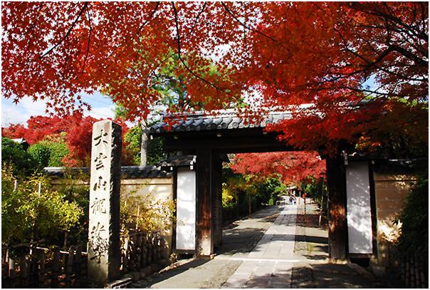 龍安寺のおすすめ観光ガイド!石と苔の神秘を感じる!