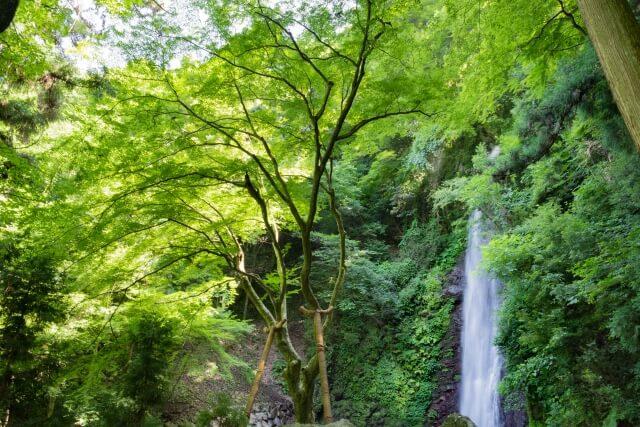 水と巡る岐阜県〜大垣・養老・木曽三川公園〜