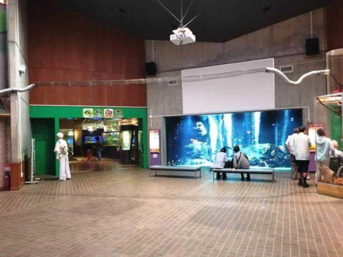 東京都足立区の足立区生物園(水族館・動物園)エントランス