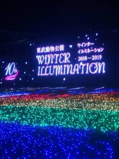 東武動物公園のクリスマスイルミネーション