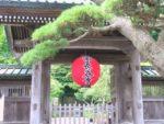 鎌倉の長谷寺 紫陽花と由比ヶ浜を同時に眺める絶景観光