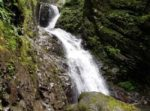 那須塩原「竜化の滝」小川・吊り橋・森林浴、遊歩道を歩いて20分