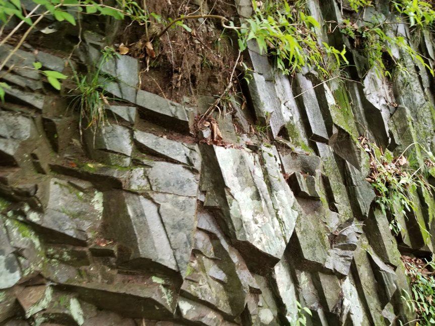 竜化の滝の散策路 序盤は階段と整備された散策路