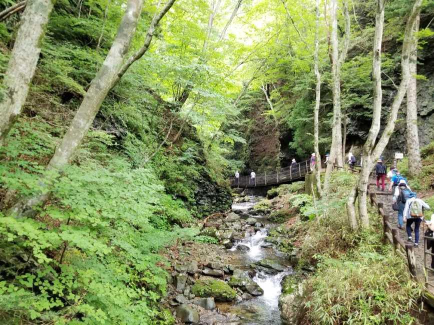 竜化の滝 散策路中盤は自然を感じながら小川に沿って歩く