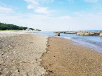 大洗公園の海辺で磯遊びできる場所 カニや小魚を探そう!