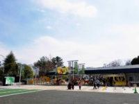 円山公園で桜と「都をどり」をしっとり楽しむ♪【京都祇園】