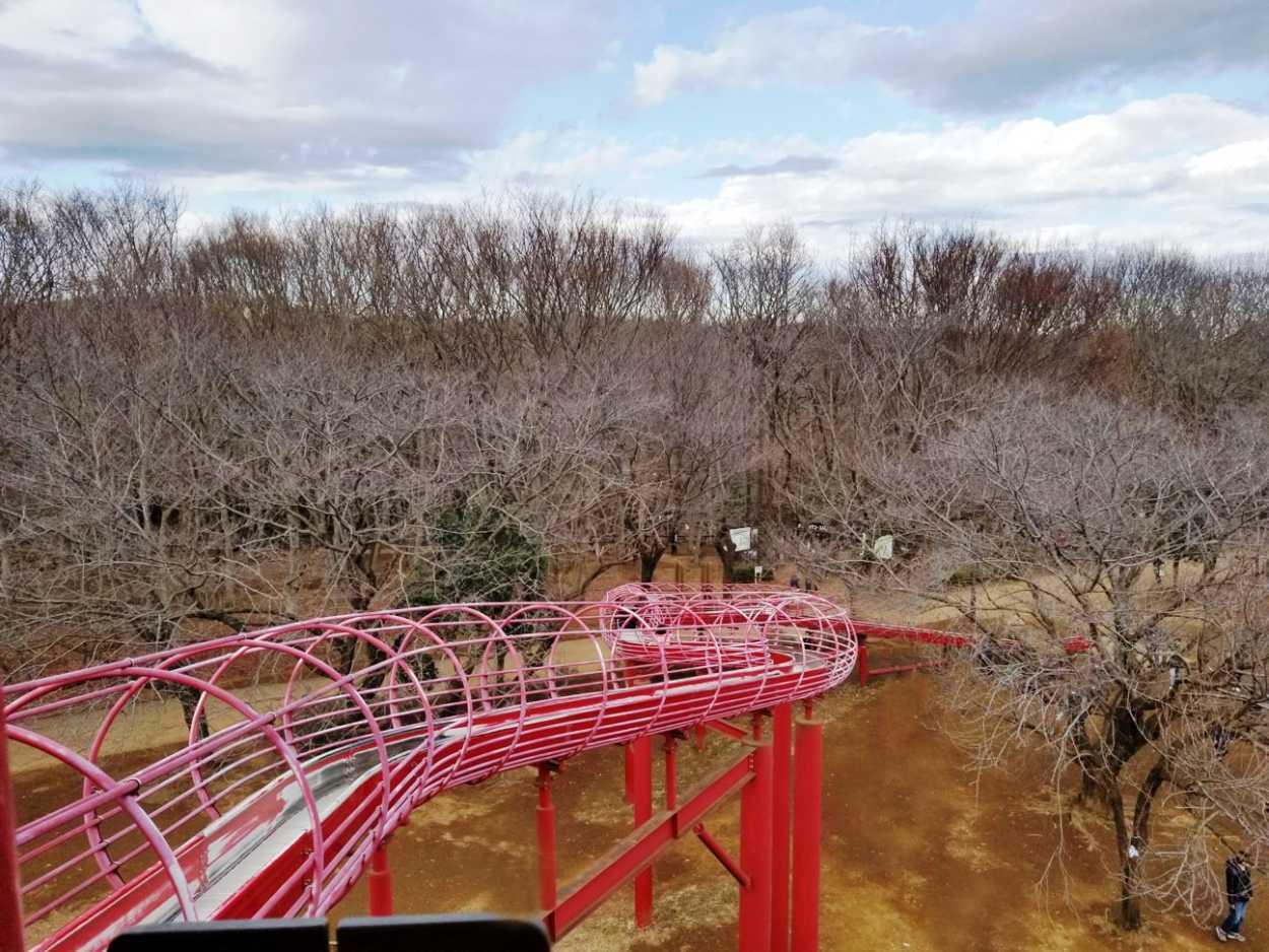 ワンパク城の長いローラー滑り台 高さ約13mから長さは約50m!