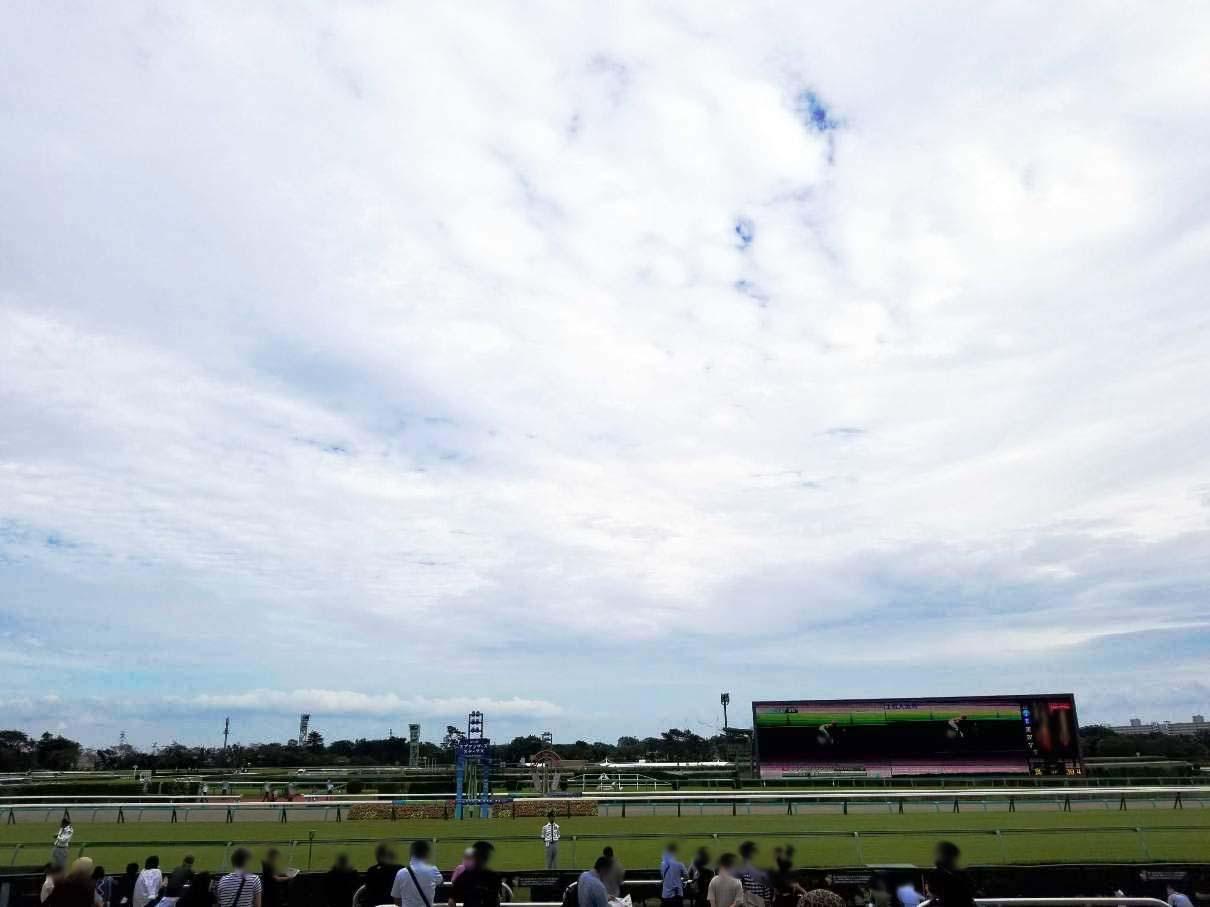 中山競馬場のターフビジョンとコース