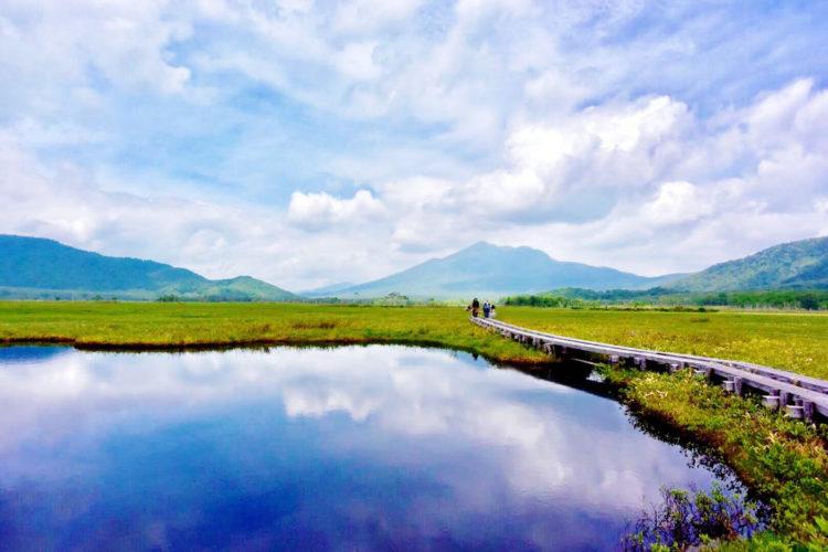尾瀬ヶ原でハイキング、緑一面の湿原に囲まれた木道を歩こう